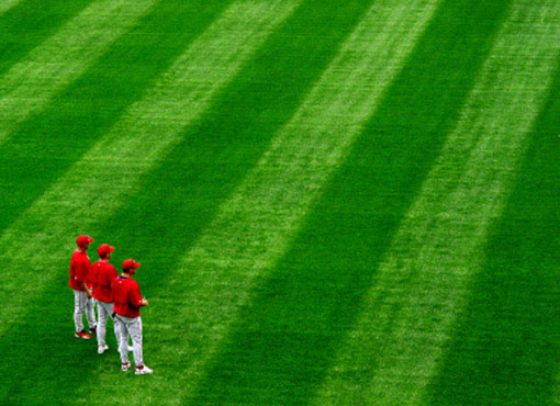 baseball players and field
