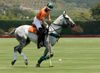 The Mental Game of Polo